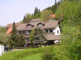 Foto 3 Auspacken und Wohlfühlen in gemütlicher, voll möblierter Dachgeschoßwohnung in Wallenfels (Naturpark Frankenwald)