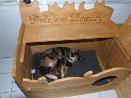 aussergew hnliche wurfkisten f r katzen in rietberg von privat katzenzubeh r. Black Bedroom Furniture Sets. Home Design Ideas