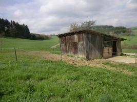 Foto 12 Außergewöhnliches Bauernhaus, 4,5 ha Wiese, Vesperstüble
