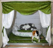 Foto 5 Ausstellungsdeko, Käfigdeko, Quickdeko, Doppelkäfig, Einzelkäfig, Katzenspieleparadies