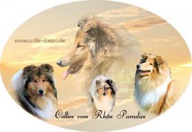 Foto 2 Autoaufkleber vom Bild Ihres Hundes
