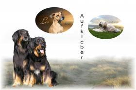 Autoaufkleber und Schilder vom eigenen Hund
