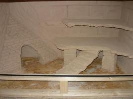 Foto 5 Bartagamen Jungtier mit Terrarium inkl. Rückwand