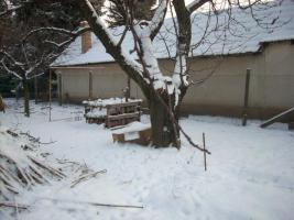 Foto 2 Bauernhaus in Ungarn