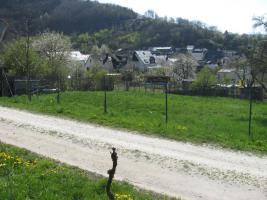 Foto 2 Bauerwartungsland Gemeinde Veldenz/ Mosel