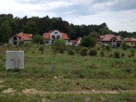 Baugrundstück 1560 M2 in Wisełka (Neuendorf)/ Polen