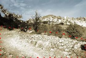 Foto 3 Baugrundstueck auf Methana/Griechenland