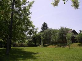 Foto 2 Baugrundstück mit Panaoramblick auf 4300qm in W-Ungarn 12000EUR