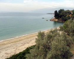 Baugrundstueck auf dem Pilion/Griechenland