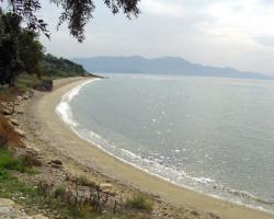 Foto 2 Baugrundstueck auf dem Pilion/Griechenland