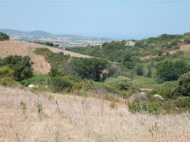 Foto 4 Baugrundstück auf Sardinien mit Meersicht