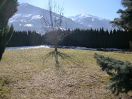 Baugrundstück in Tirol