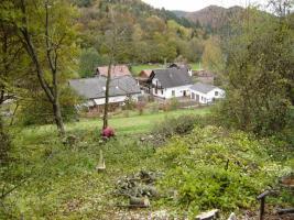 Foto 2 Baugrundstück, erschlossen in Eußerthal (SÜW)