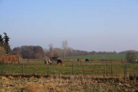 Foto 3 Bauland 2.012qm (teilbar) mit Bauernhaus, unverbaub. Südblick