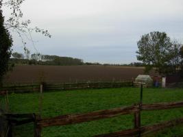 Foto 4 Bauland in Wirdum