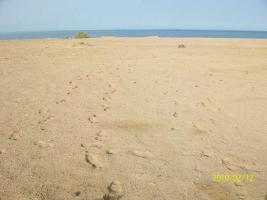 Bauland direkt am Meer Safaga Ägypten