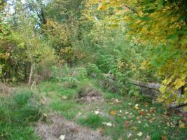 Bauland / Baugrundstück – auch für Anleger und Camping- und Naturfreunde geeignet