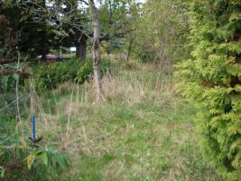 Foto 3 Bauland / Baugrundst�ck � auch f�r Anleger und Camping- und Naturfreunde geeignet