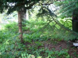 Foto 5 Bauland / Baugrundstück – auch für Anleger und Camping- und Naturfreunde geeignet