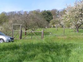 Baumgrundstück mit Aussicht