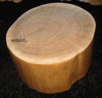 Foto 3 Baumstamm Neu ausgehöhlt mit Ablage