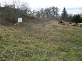 Foto 2 Bauplatz in TO von Waldrems mit 1255 qm Versteigerung