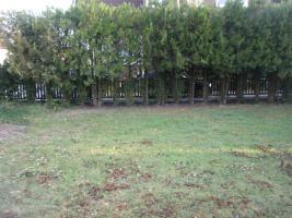 Foto 3 Bauplatz von privat in Lambsheim zu verkaufen