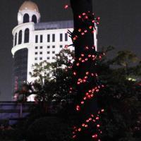 Foto 4 Beleuchtung für Weihnachten Festen Geburtstag Lichterkette