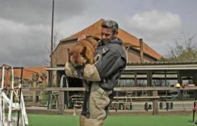 Foto 4 Belgischer Schäferhund Malinois