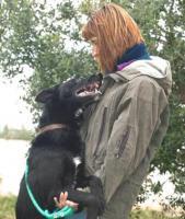 Foto 4 Belgischer Schäferhund Mischling VAN GOGH sucht ein Zuhause oder eine PS