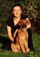 Foto 2 Belohne deinen Hund gesund!