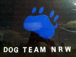 Beratung Hundekauf welche Rasse passt zu mir & Testhundewoche  : Dog Team NRW