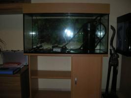 Biete 200 l Aquarium