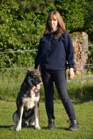 Biete Hilfe bei Probleme mit Wolfshunden