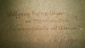Foto 2 Bild Wolfgang Heinz Unger ''Schwanenfamilie auf Chiemsee''