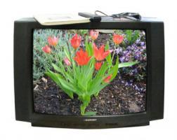 Blaupunkt Stereo Fernseher