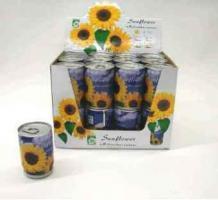 Bluemen aus der Dose / Sonnenblume