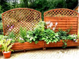 Blumenkübel mit Rankengitter - Terrassen Sichtschutz