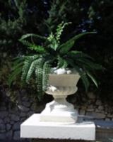 Foto 2 Blumenkübel / Blumenvase / Amphore / Gartendeko