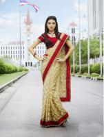 Bollywood Sari Agoods