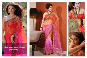 Bollywood Schauspieler Stars Saree(Sari)
