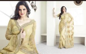 Bollywood elegantes Luxus sari