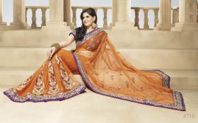 Bollywood hellorange Net Saree (Sari) mit Blusestoff