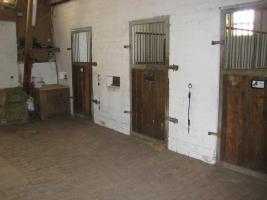 Foto 2 Box mit täglichem Ausgang in 59387 Ascheberg-Herbern frei