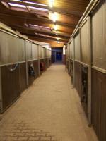 Foto 3 Boxen und Offenställe in der Eifel frei