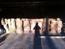 Brennholz Fichtenstamm, zers�gt