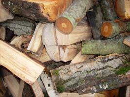 Foto 2 Brennholz Hartholz gespalten und geschnitten