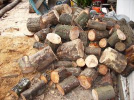 Foto 4 Brennholz Hartholz gespalten und geschnitten