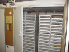 Foto 4 Brutschrank, Schlupfbrüter, Brutautomat 7 Stück