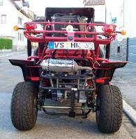 Foto 3 Buggy 250ccm Gokart Cart 2 Sitzer mit Strassenzulassung als Quad Kart